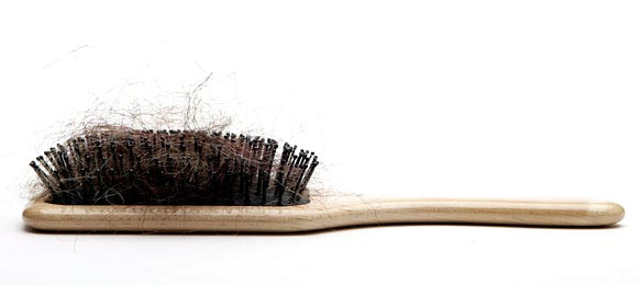 hairinbrush NY TIMES: Female Hair Loss